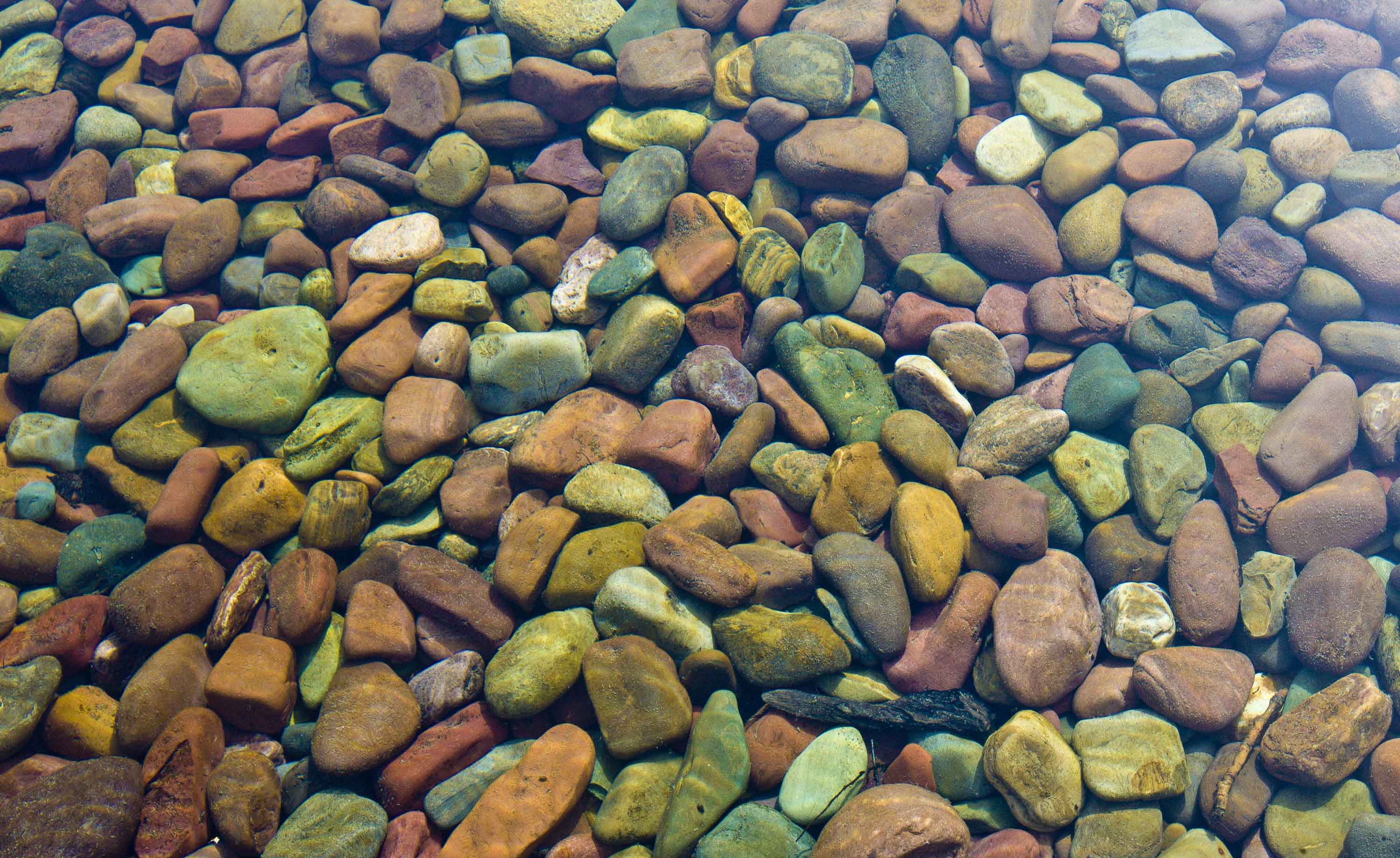 River Stones | Color and Form | Jed Share Images | Seattle